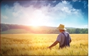 Front Template 0019 - Man in Wheat Field