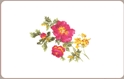 Front Template 0039 - Painted Flower