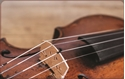 Front Template 0045 - Violin