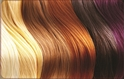 Front Template 0049 - Hair Colours